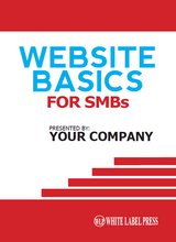 Book - Website Basics for SMBs - CUSTOM BRANDED Print and Digital Edition Package