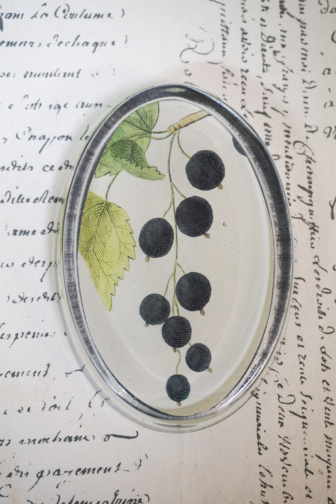 John Derian 'Black Berry' Oval Paperweight