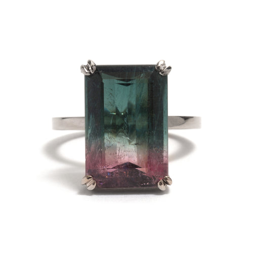 Double Claw Watermelon Tourmaline Ring