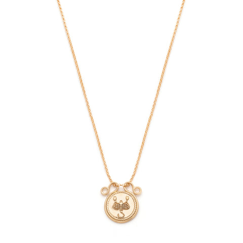 Long Zodiac Necklace - Gold