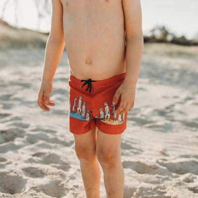 Oomph and Floss Meerkats Swimshorts - Annie and Islabean
