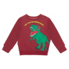 Rock Your Baby We Can Be Dinosaurs Sweatshirt - Annie and Islabean