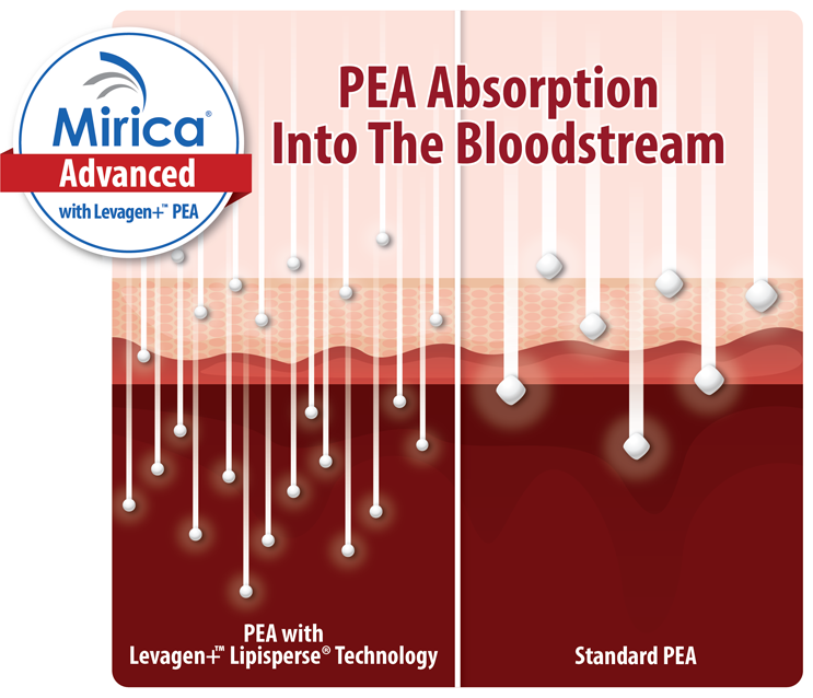 Graph showing superior absorption of Mirica Advanced compared to standard PEA supplements