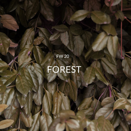 FW20 FOREST
