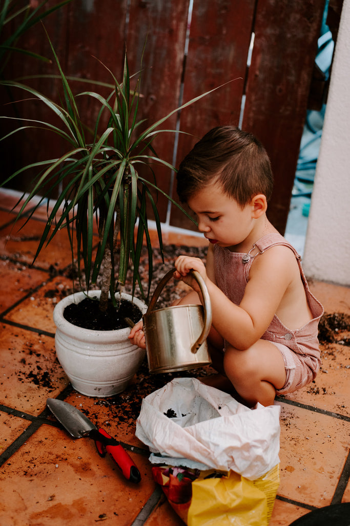 Kids Chores House Plant Care