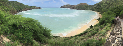 Top 5 Oahu Beaches Hanauma Bay