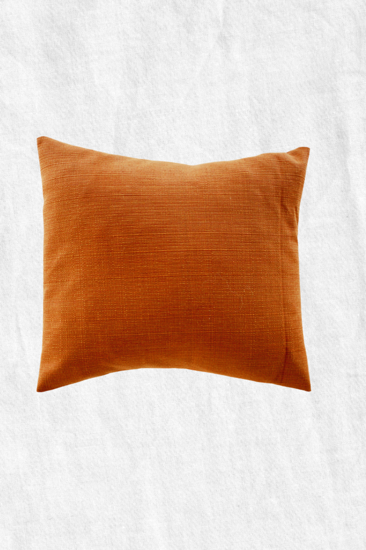 Turmeric Duck Feather Throw Pillow + Case