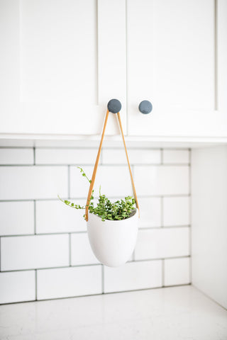 Ceramic + Leather Wall Hanging Planter