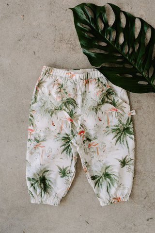 Kids Joggers in Flamingo