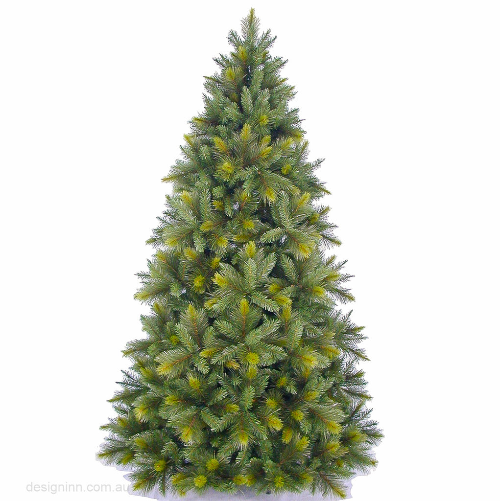 Oxford Spruce Tree 8.5 Ft