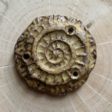 Mustard Seed Fossil Connector
