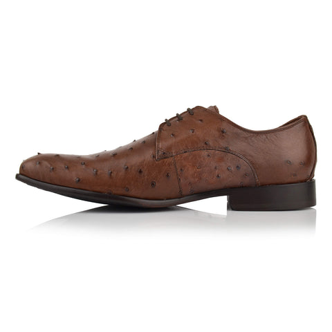 LM141 - Language Men's Exotic Brown Derby Shoes