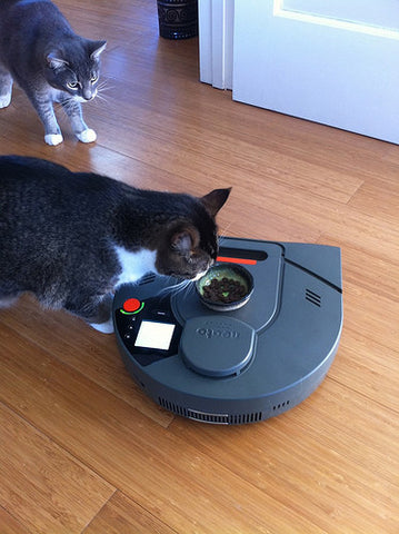Neato Vacuum and Cats