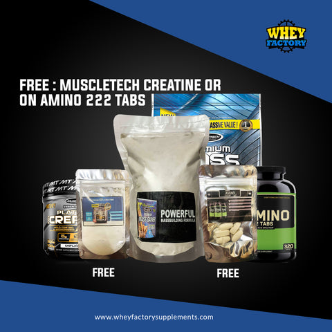 Muscltech Premium Mass Gainer 1lb with FREE 5 Tablets of ON Amino 2222 or 3 servings of Platinum Creatine
