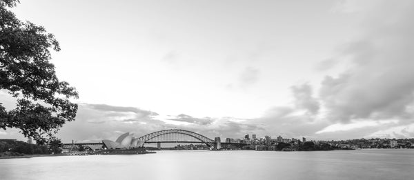 Sydney Harbour Panorama