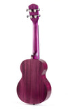 Free Shipping within USA! VTAB EL Series Concert Ukulele with Gig-Bag