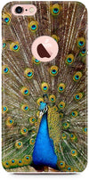 Peacock the Angel Designer Cases for iPhone 6