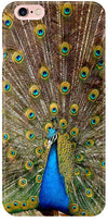Peacock the Angel Mobile Cases for iPhone 6S