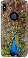 Peacock the Angel Mobile Covers for iPhone X