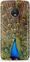 Peacock the Angel Mobile Covers for Motorola Moto G5