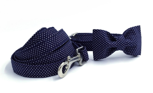 Navy blue and white dot bow tie dog collar and leash