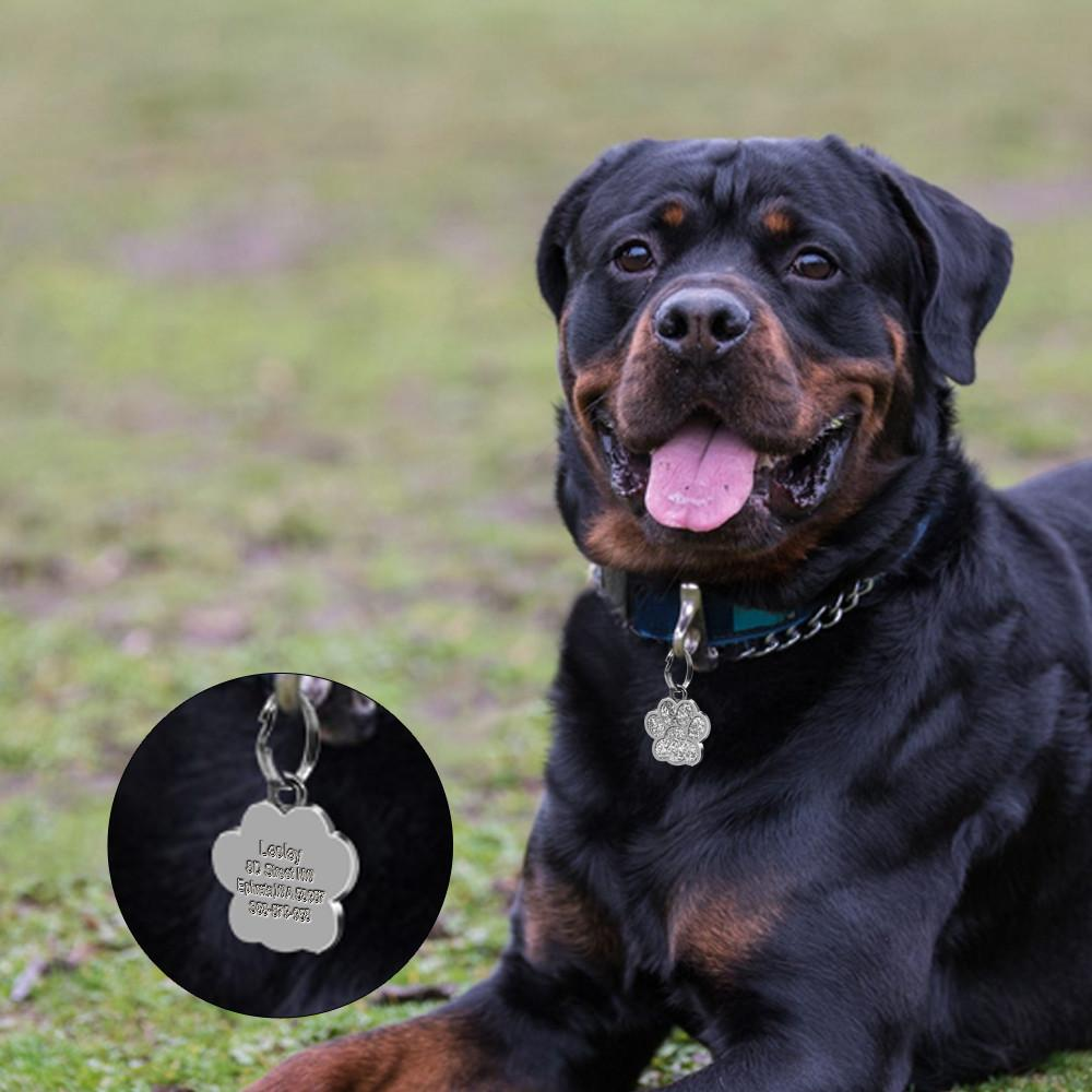 Glitter Paw Custom Engraved ID Tag with dog