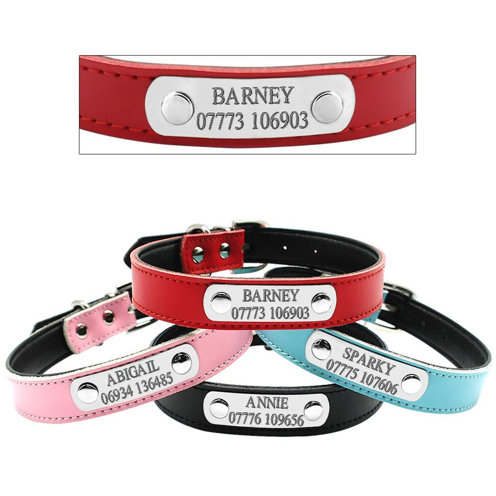 Custom Engraved Collar & Leash