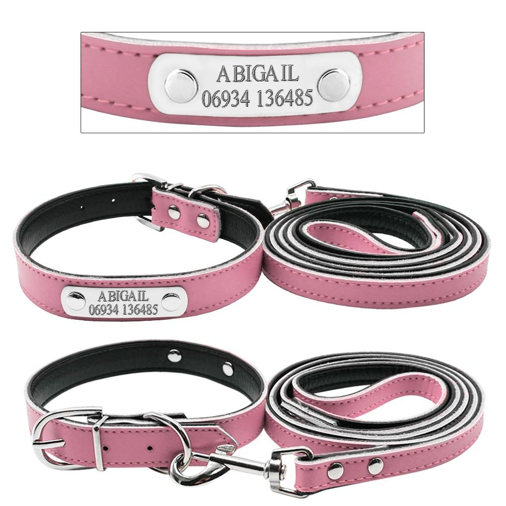 Personalized Engraved Dog Collar And Leash - Pink Front and Back View