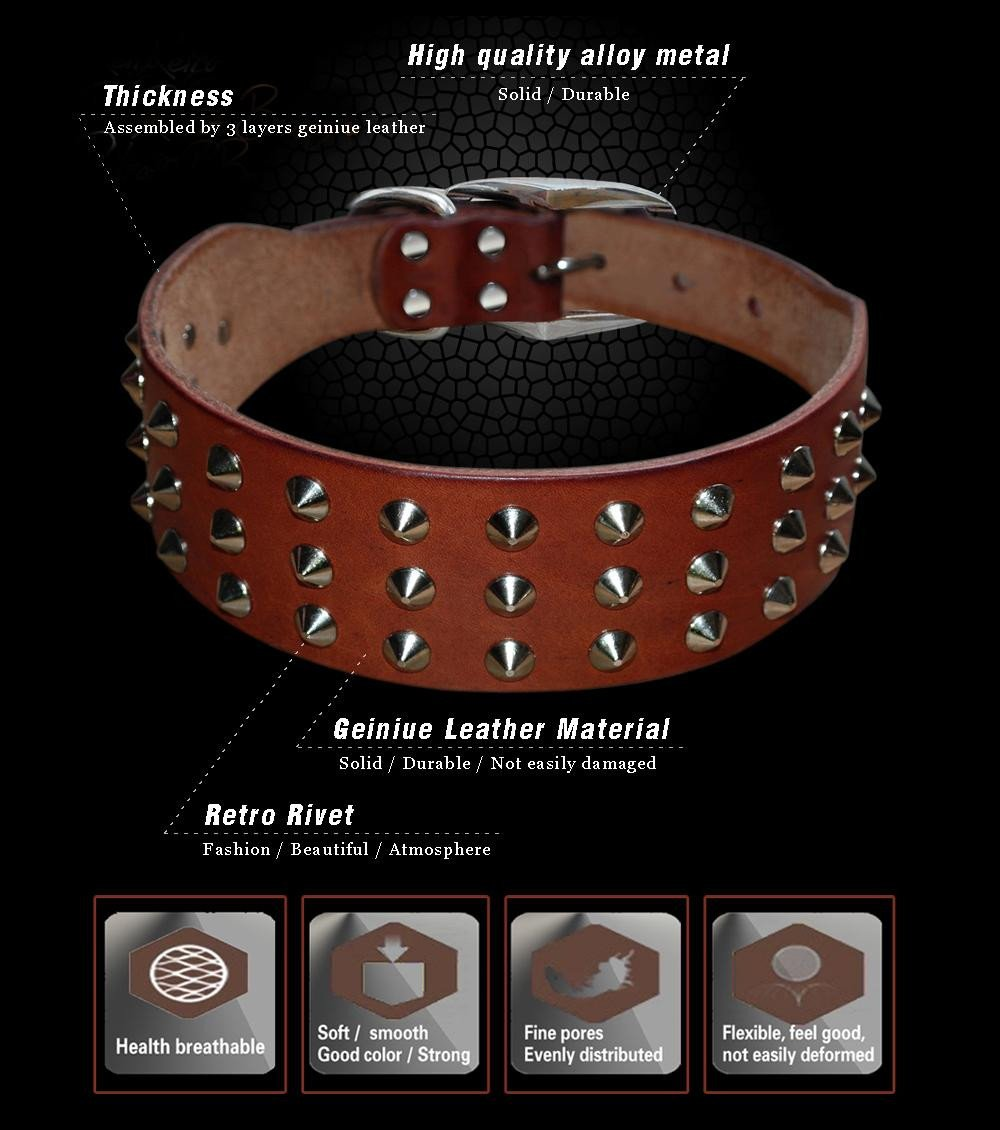 100% real leather studded dog collar