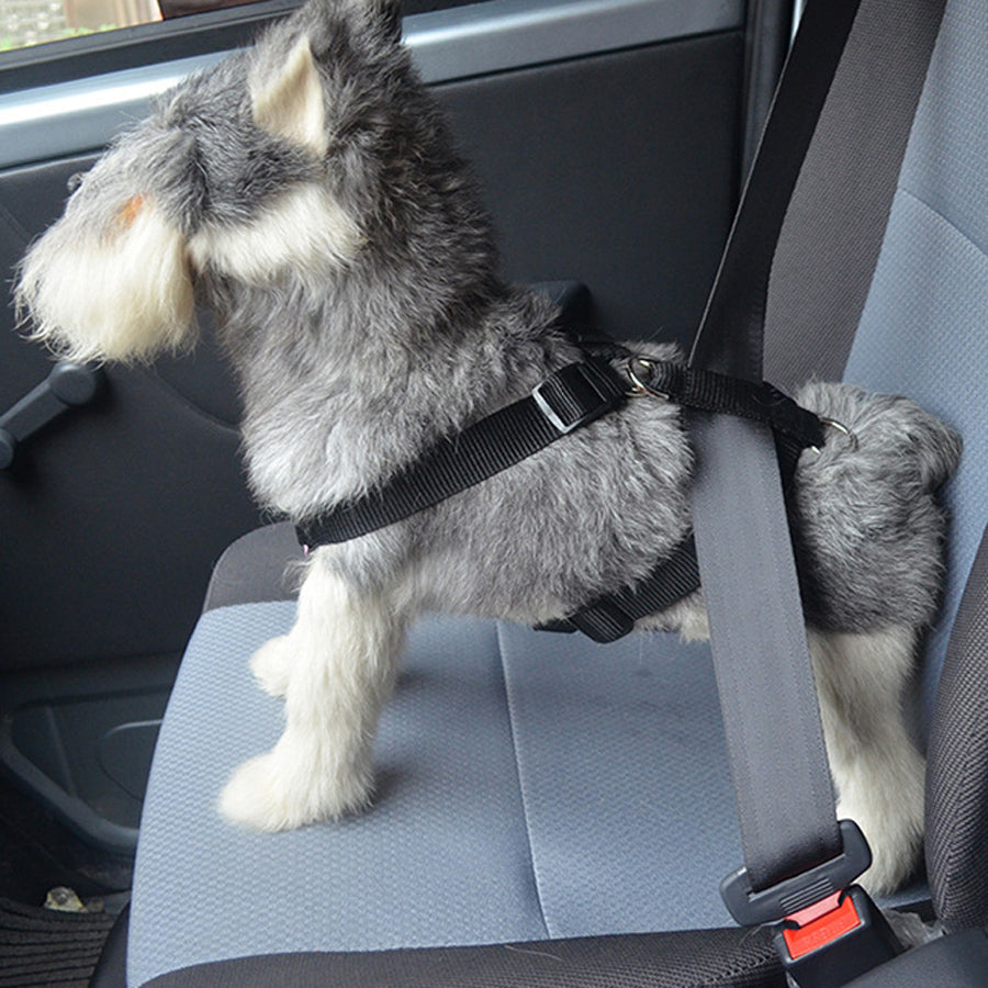 Dog Harness Car Safety Belt