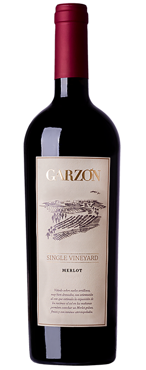 2017 Bodegas Garzon Single vineyard Merlot