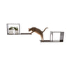 The Sophia Wall Mounted Cat Tree in Black