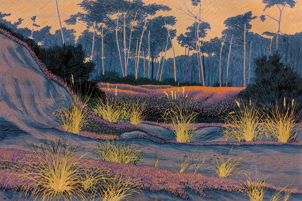 Del Monte Forest - Reduction Woodcut Print on Paper by Gordon Mortensen