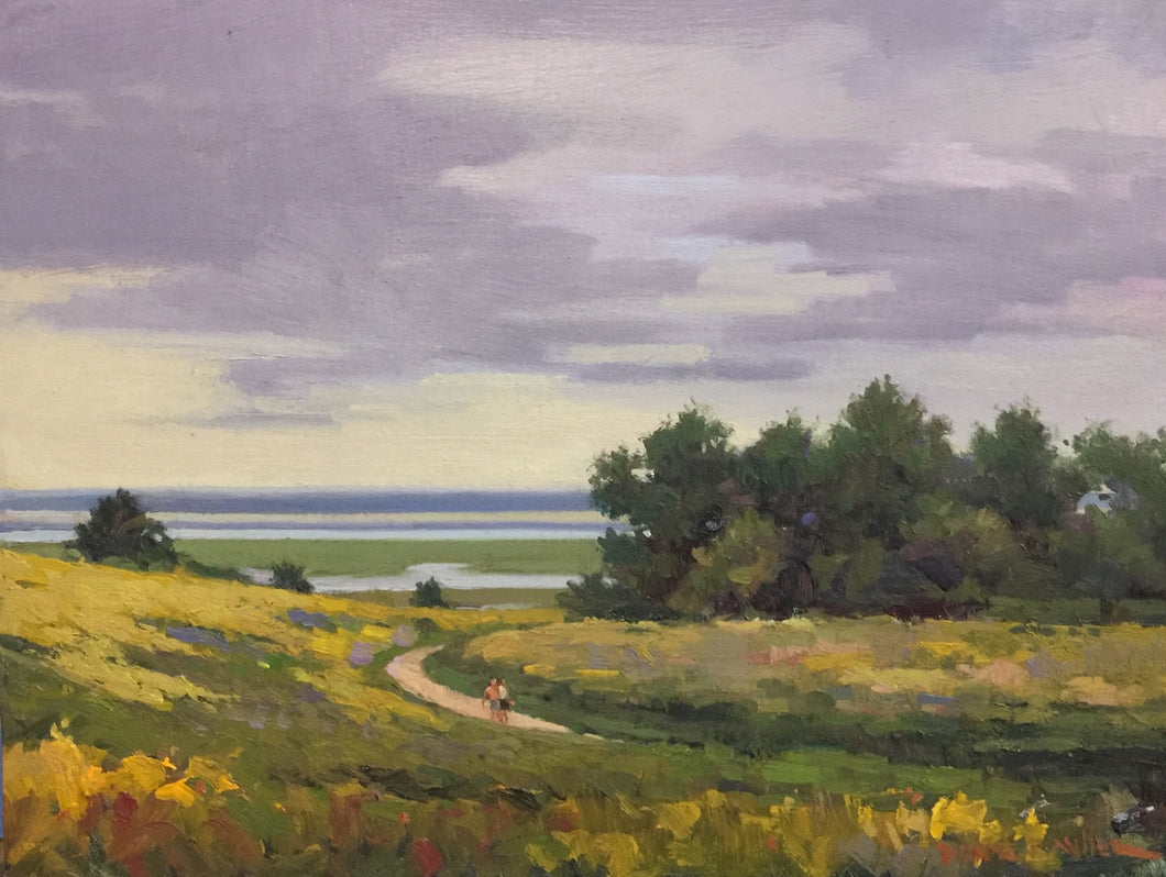 Goldenrod on Fort Hill - Dianne Miller