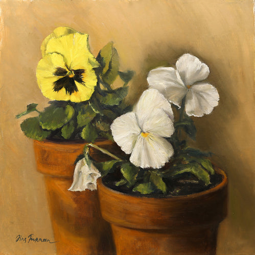 Pansies in a Pot  Irina Furman