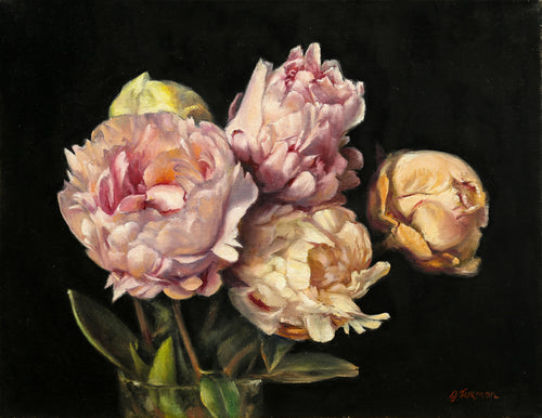 Peonies on Black Background - Irina Furman