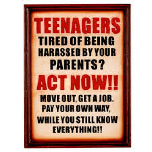Teenagers Act Now!! Pub Sign