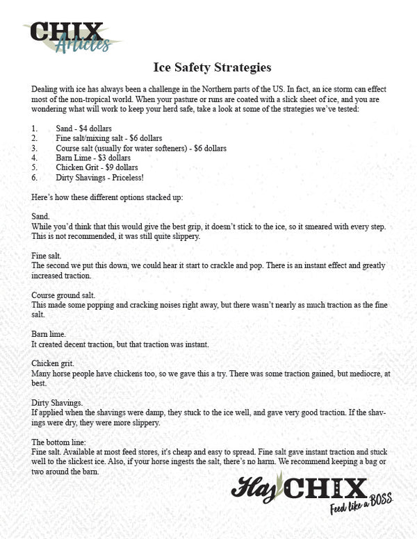 Article: Ice Safety Strategies