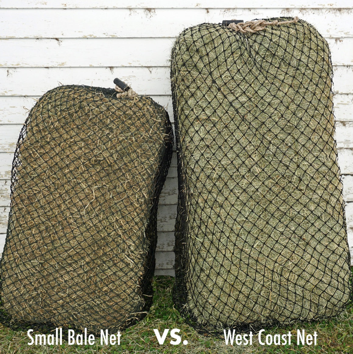 Hay Chix® West Coast Net
