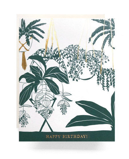 House Plant Birthday