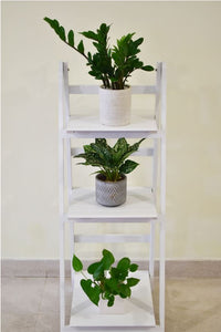 White 3 Tier Wooden stand