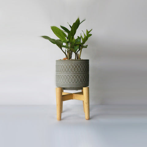Grey Cement Pot on Wooden Stand – Small