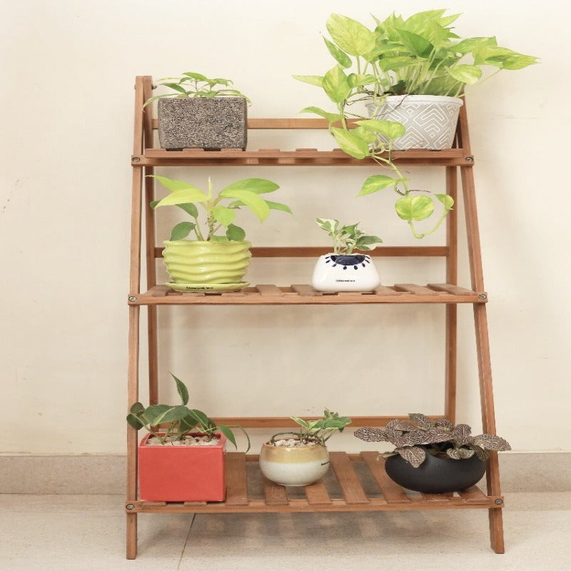 3 Tier Wooden stand