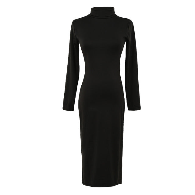 Women  Turtle Neck Long Sleeve Winter Party Evening Dress