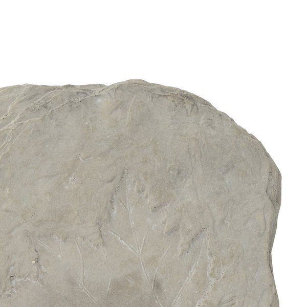 Concrete Fossil Accent Stone with Fern Leaves Imprint, Gray - BM200856