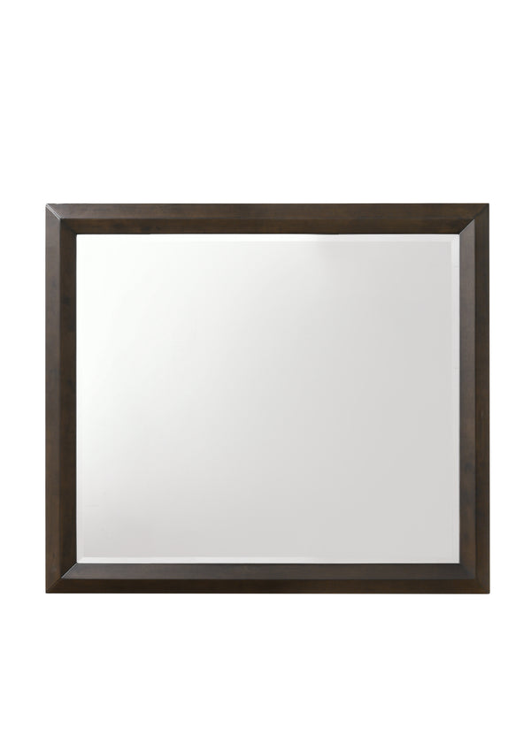 Transition Style Wooden Mirror with Rectangular Shape,Brown and Silver - BM205578