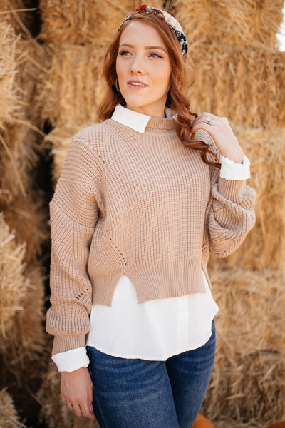 The Clara Turtle Neck Top in Taupe