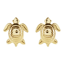 Stud Earrings - Turtle Earrings With Glossy Finish