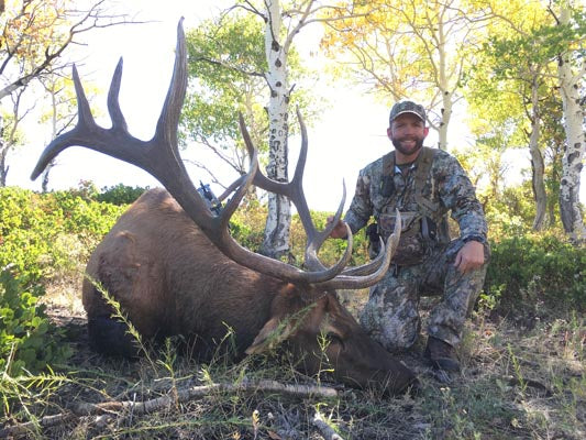 Trophy Bull Elk's Last Fight