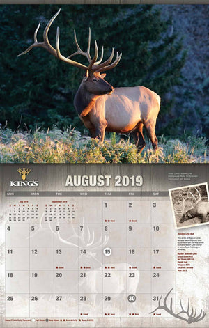2019 King's Bucks & Bulls Calendar TWIN Pack | King's Camo